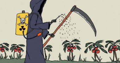 El mito de agroquímicos inocuos
