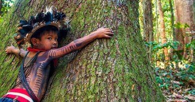 El arriesgado y crucial papel indígena de conservar la tierra