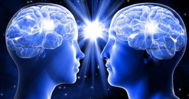 Neurosexismo: cómo la neurociencia destruyó el mito de que los hombres y las mujeres tienen cerebros distintos