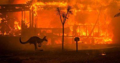 La apatía mundial ante los incendios de Australia es un presagio aterrador para el futuro