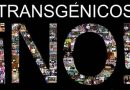 Sin ciencia no hay futuro, pero ¿y sin transgénicos?