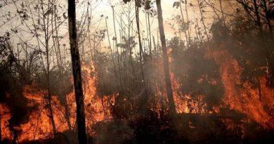 El Chernóbil de la Amazonía: una advertencia para todos