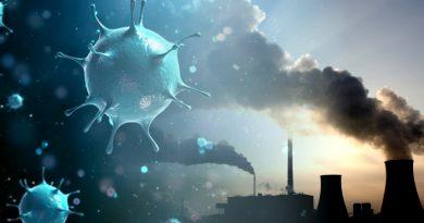 Pandemia y ecología